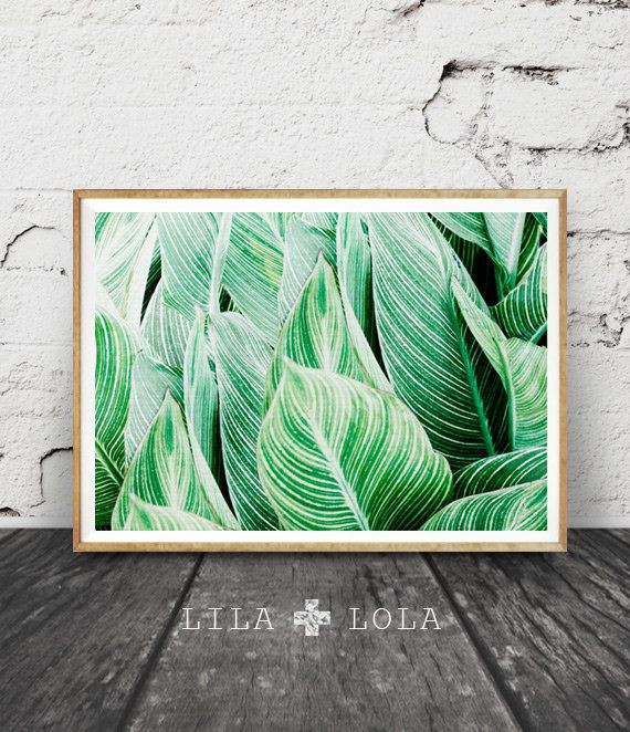 Best ideas about Tropical Wall Art . Save or Pin Best 25 Tropical art ideas on Pinterest Now.