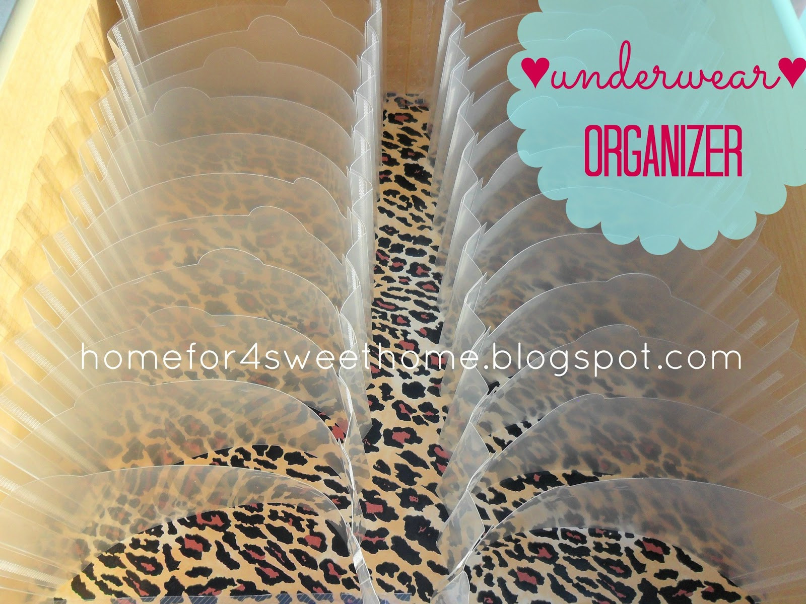 Best ideas about Underwear Organizer DIY . Save or Pin Home For4 Sweet Home Spring Cleaning Organizing Underwear Now.