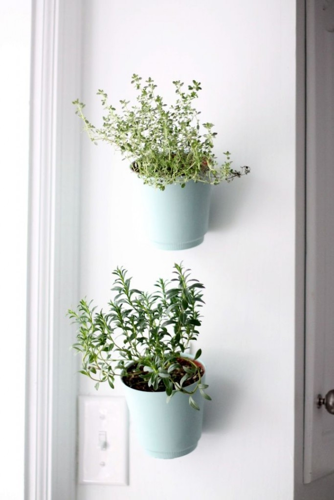 Best ideas about Wall Planters Indoor . Save or Pin 18 Alluring Indoor Wall Hanging Planter Designs Now.
