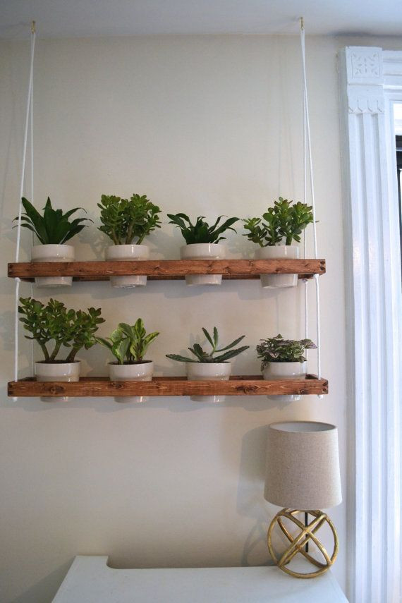 Best ideas about Wall Planters Indoor . Save or Pin Best 25 Indoor wall planters ideas on Pinterest Now.