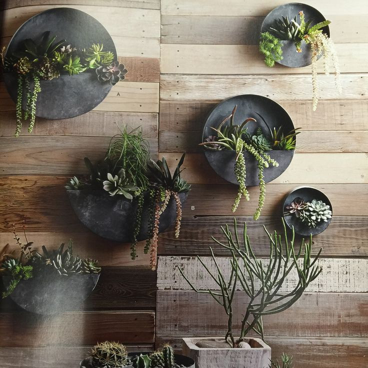 Best ideas about Wall Planters Indoor . Save or Pin Orbea Zinc Wall Planters Now.