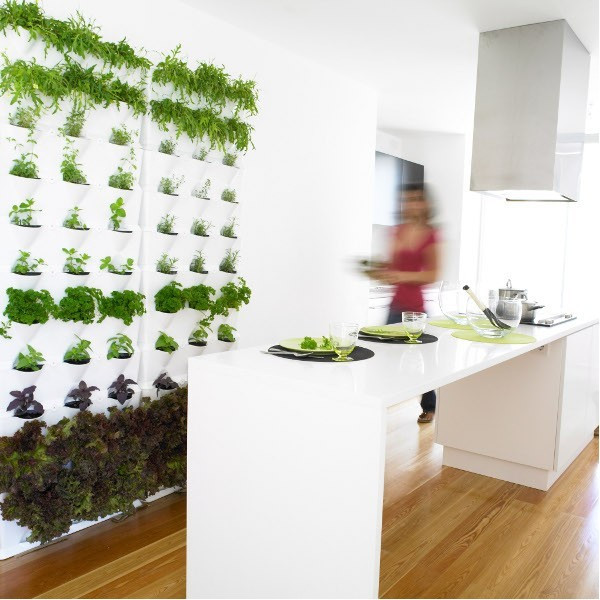Best ideas about Wall Planters Indoor . Save or Pin Indoor Outdoor Living Wall Planters Contemporary Now.
