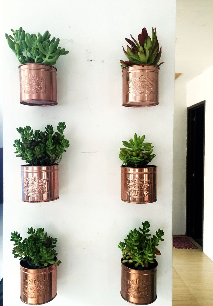 Best ideas about Wall Planters Indoor . Save or Pin 25 best ideas about Wall Planters on Pinterest Now.