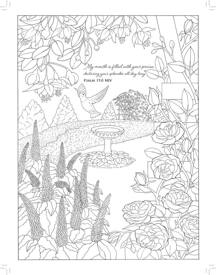 Best ideas about Adult Coloring Books Amazon . Save or Pin A Walk in the Garden Coloring Beauty Majestic Now.