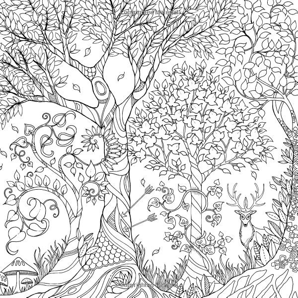Best ideas about Adult Coloring Books Amazon . Save or Pin Enchanted Forest An Inky Quest & Coloring Book Johanna Now.