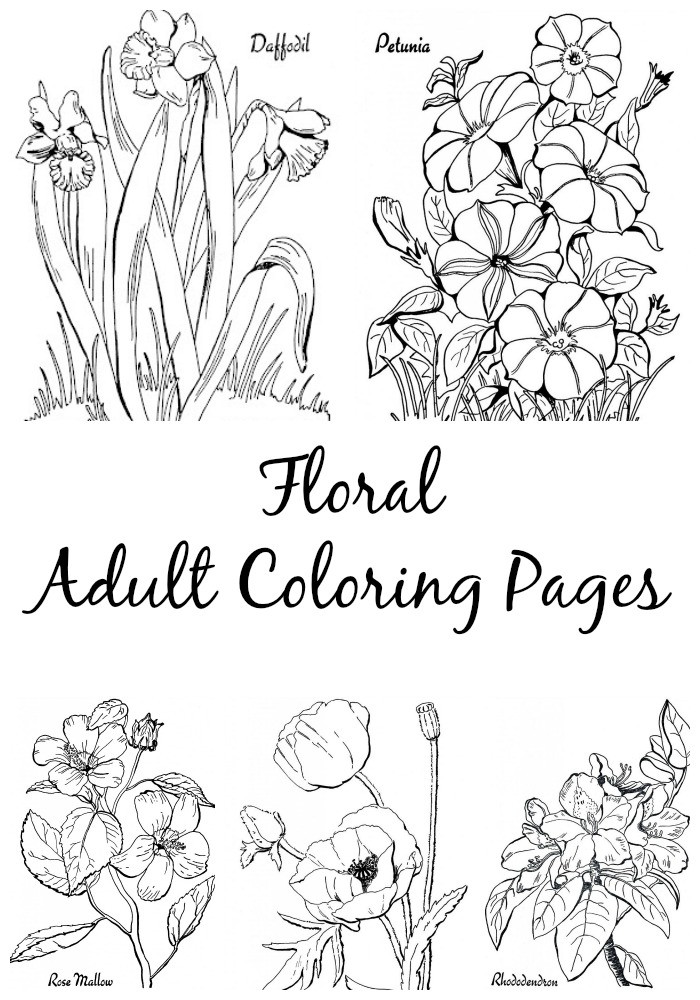 Best ideas about Adult Themed Coloring Books . Save or Pin 7 Floral Adult Coloring Pages The Graphics Fairy Now.