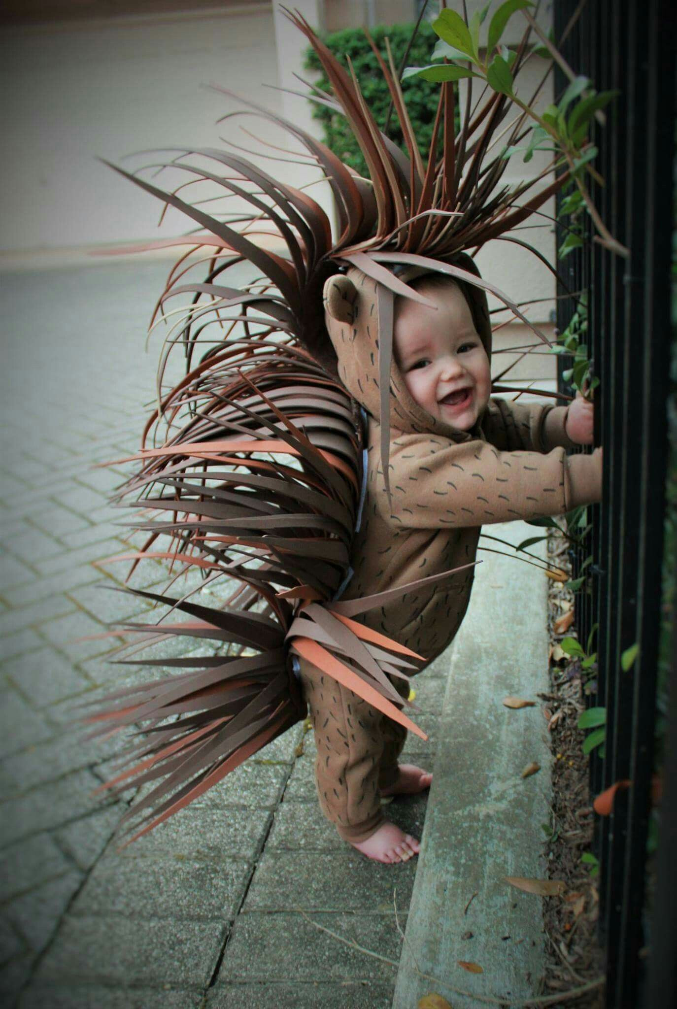 Best ideas about Animal Costume DIY . Save or Pin Porcupine halloween costume diy 2016 Now.