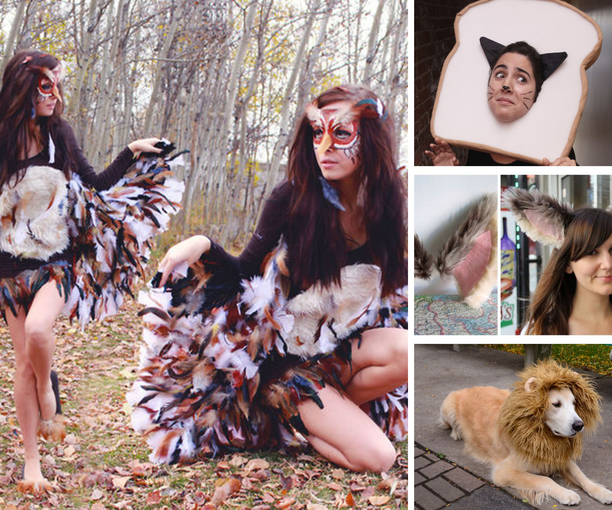 Best ideas about Animal Costume DIY . Save or Pin DIY Animal Costumes Now.