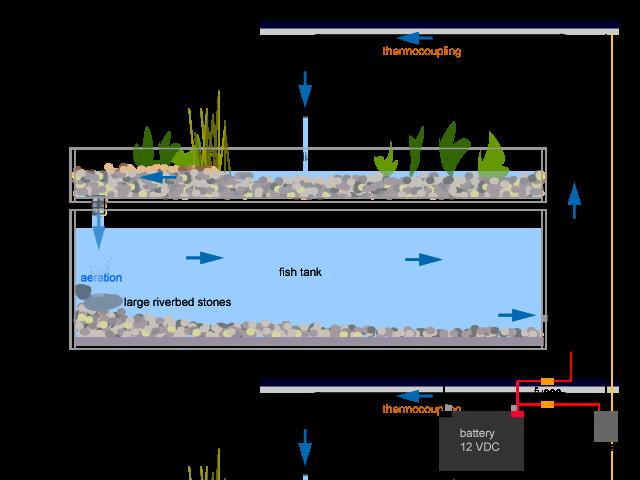 Best ideas about Aquaponic DIY Plans . Save or Pin Diy Aquaponics Plans What Is Aquaponic System Now.