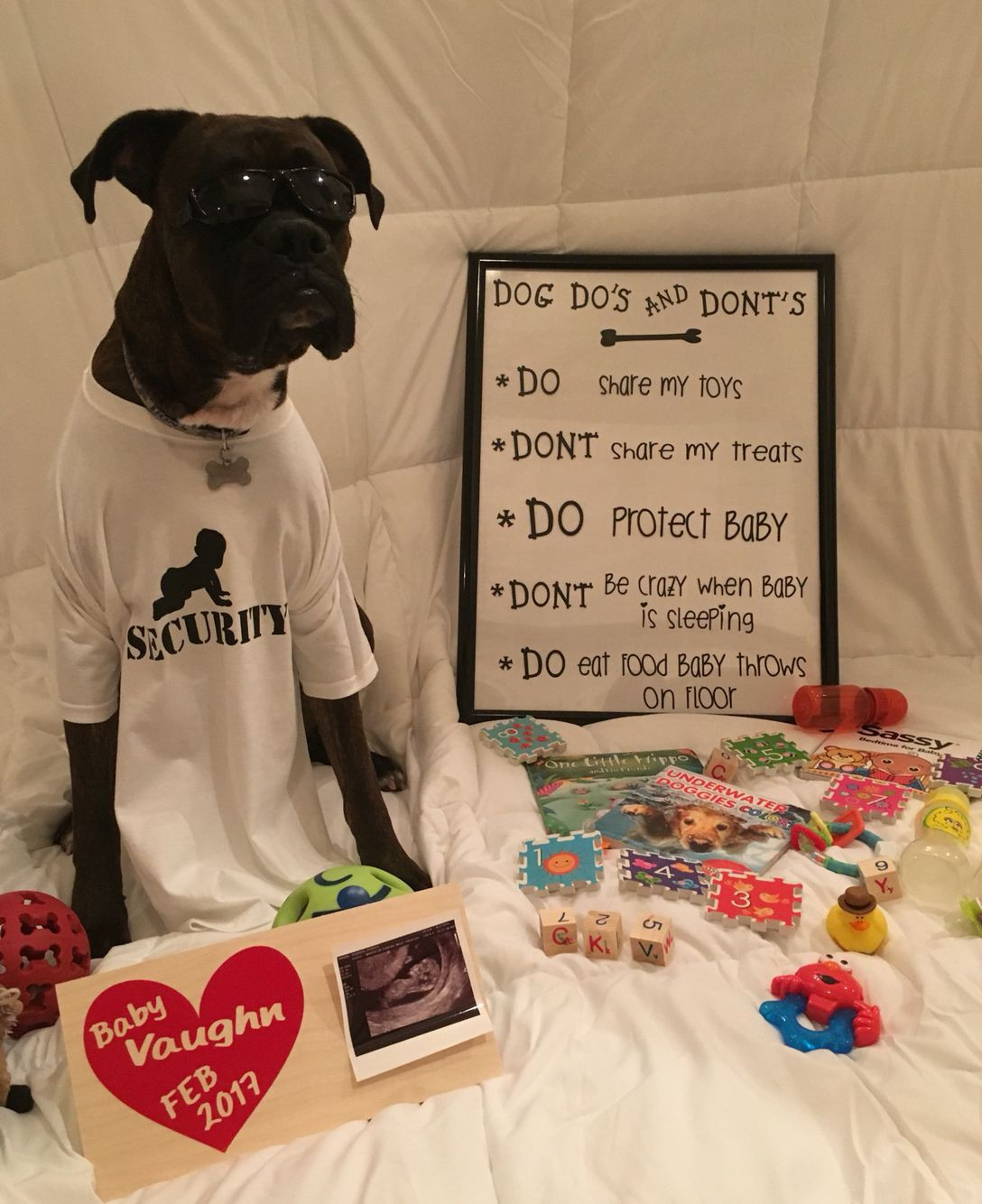 Best ideas about Baby Announcement Gift Ideas . Save or Pin Cute baby announcement idea with dog baby Now.
