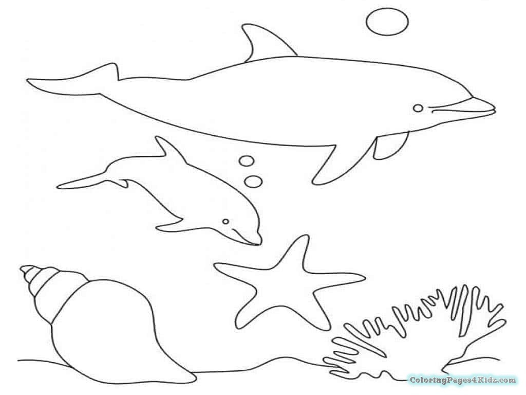 Best ideas about Baby Dolphin Coloring Pages For Kids . Save or Pin Cute Baby Dolphin Coloring Pages Now.