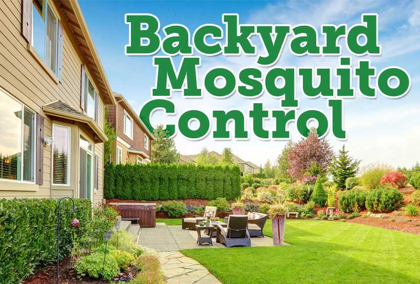 Best ideas about Backyard Mosquito Repellent . Save or Pin The Best Mosquito Granules for Backyards Mosquito Now.