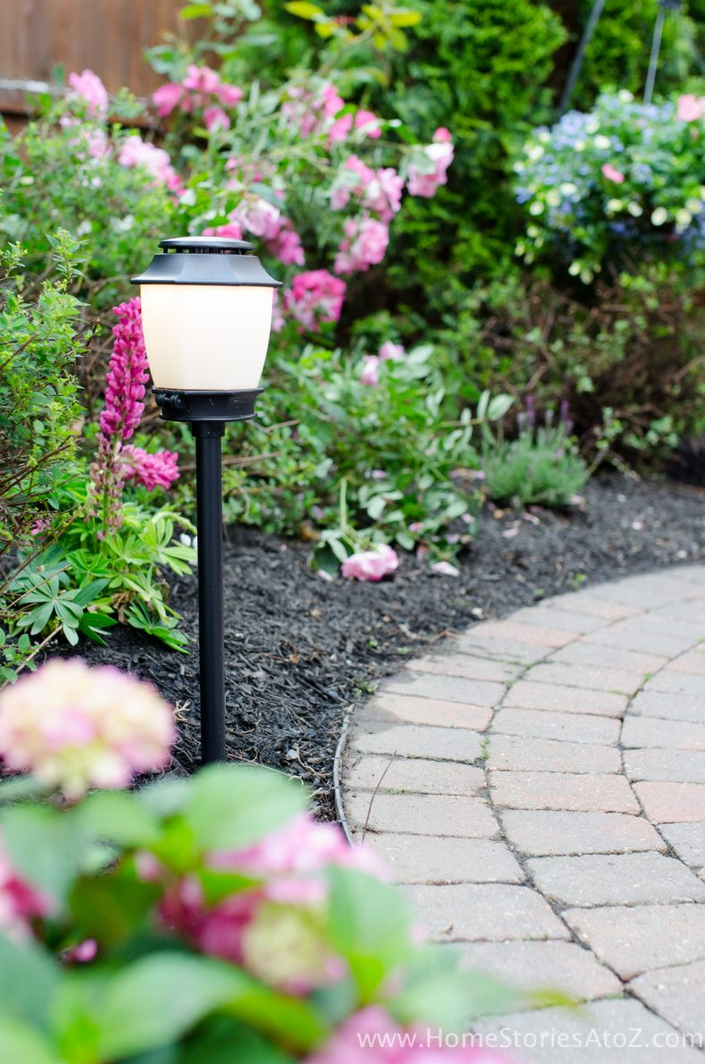 Best ideas about Backyard Mosquito Repellent . Save or Pin Urban Backyard Makeover with Outdoor Mosquito Repellent Now.