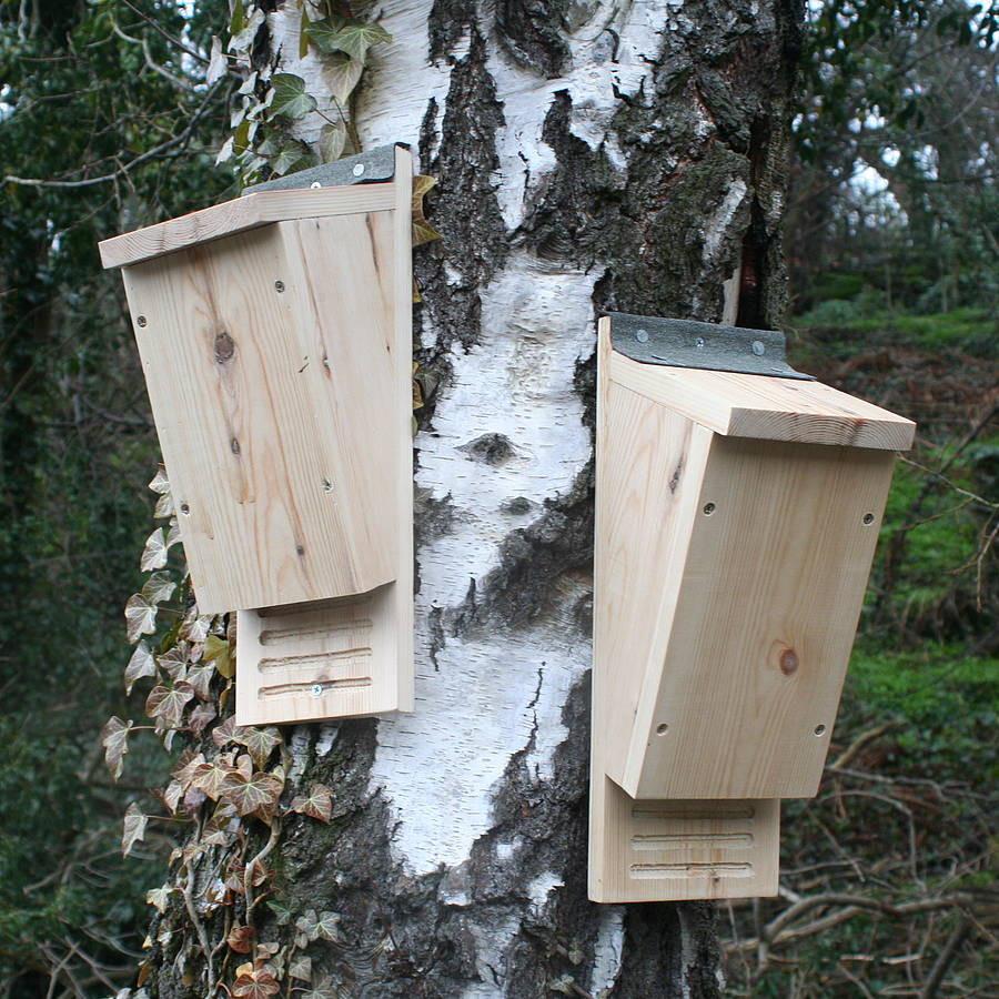 Best ideas about Bat Box DIY . Save or Pin handmade wooden bat box by wudwerx Now.