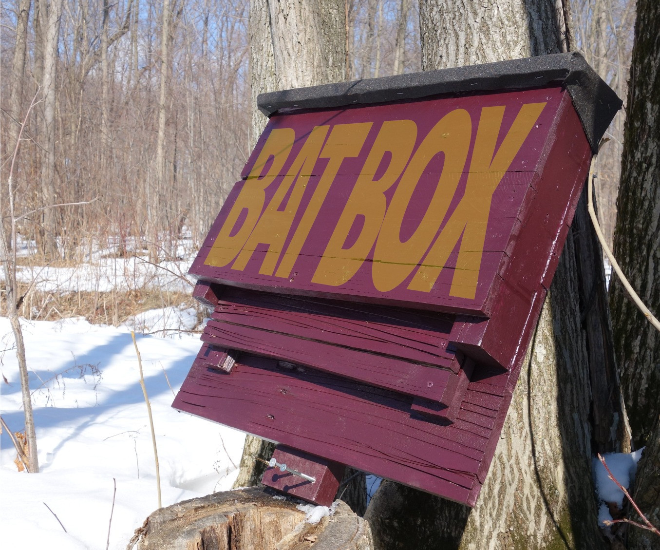 Best ideas about Bat Box DIY . Save or Pin Bat Box From a Reclaimed Pallet 7 Steps with Now.