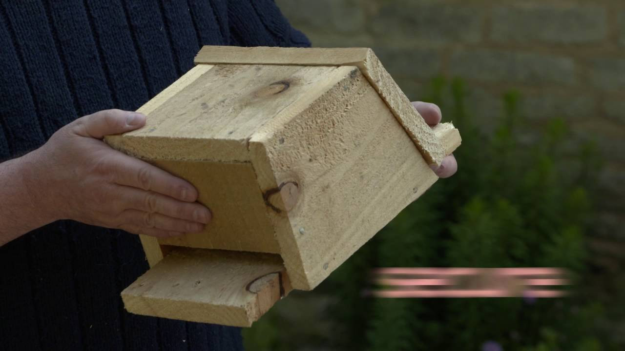 Best ideas about Bat Box DIY . Save or Pin Build a bat box & help give nature a home Now.