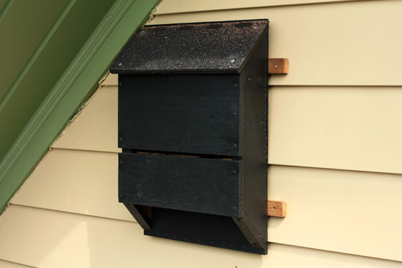Best ideas about Bat Box DIY . Save or Pin How Tuesday Build a Bat House Etsy Journal Now.
