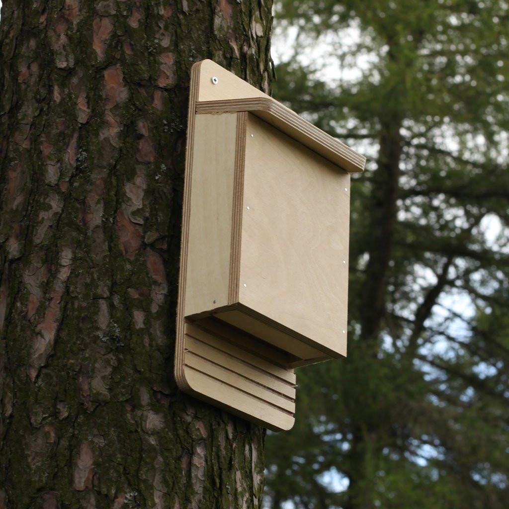 Best ideas about Bat Box DIY . Save or Pin Bat Box Kit Now.