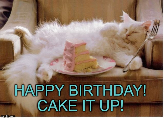Best ideas about Birthday Cake Memes . Save or Pin Birthday Fat Cat Imgflip Now.