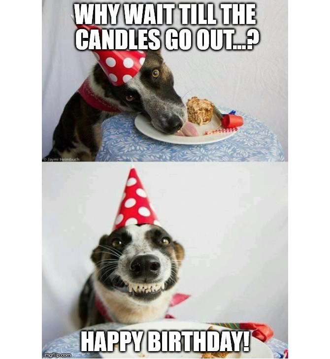 Best ideas about Birthday Cake Memes . Save or Pin The 18 Best Happy Birthday Memes to Brighten Someone s Day Now.