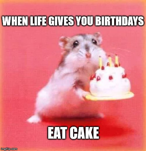 Best ideas about Birthday Cake Memes . Save or Pin Top 100 Original and Funny Happy Birthday Memes Now.