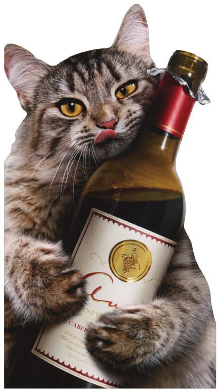 Best ideas about Birthday Cat Funny . Save or Pin Cat Wine Bottle Avanti Oversized Funny Birthday Card by Now.