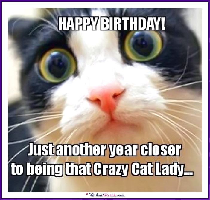 Best ideas about Birthday Cat Funny . Save or Pin Happy Birthday Memes with Funny Cats Dogs and Cute Animals Now.