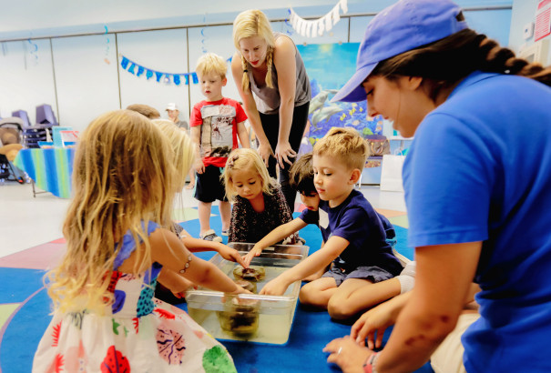 Best ideas about Birthday Party San Diego . Save or Pin 12 Kid's Birthday Party Venues That Are a Piece of Cake to Now.
