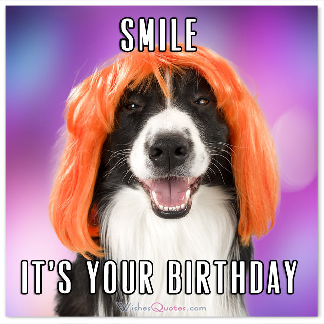 Best ideas about Birthday Pics Funny . Save or Pin The Funniest and most Hilarious Birthday Messages and Cards Now.