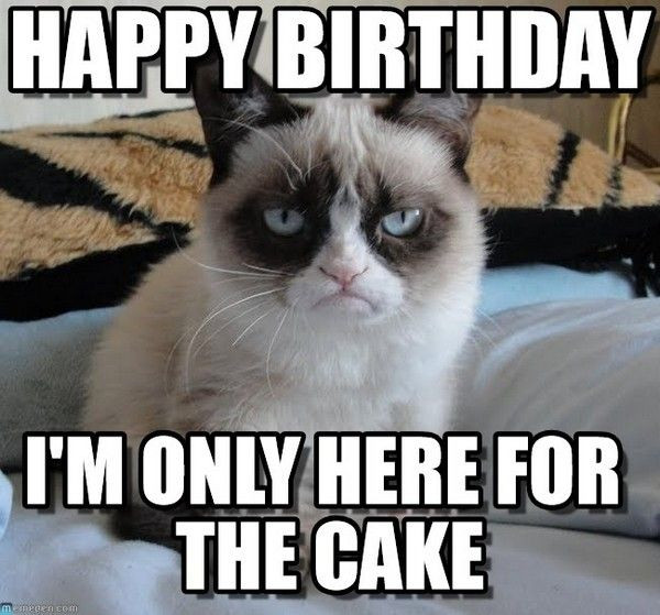 Best ideas about Birthday Wishes Meme . Save or Pin 100 best images about Happy Birthday Meme on Pinterest Now.