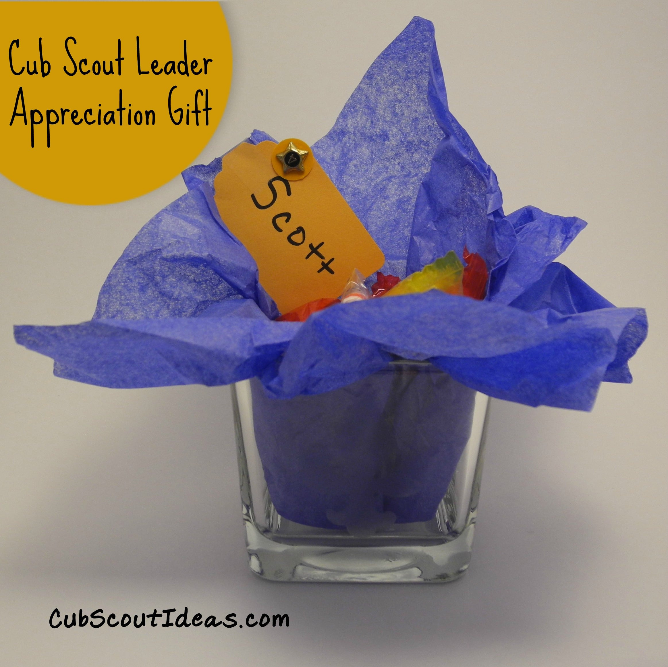 Best ideas about Boy Scout Gift Ideas . Save or Pin Cub Scout Leader Appreciation Gifts Now.