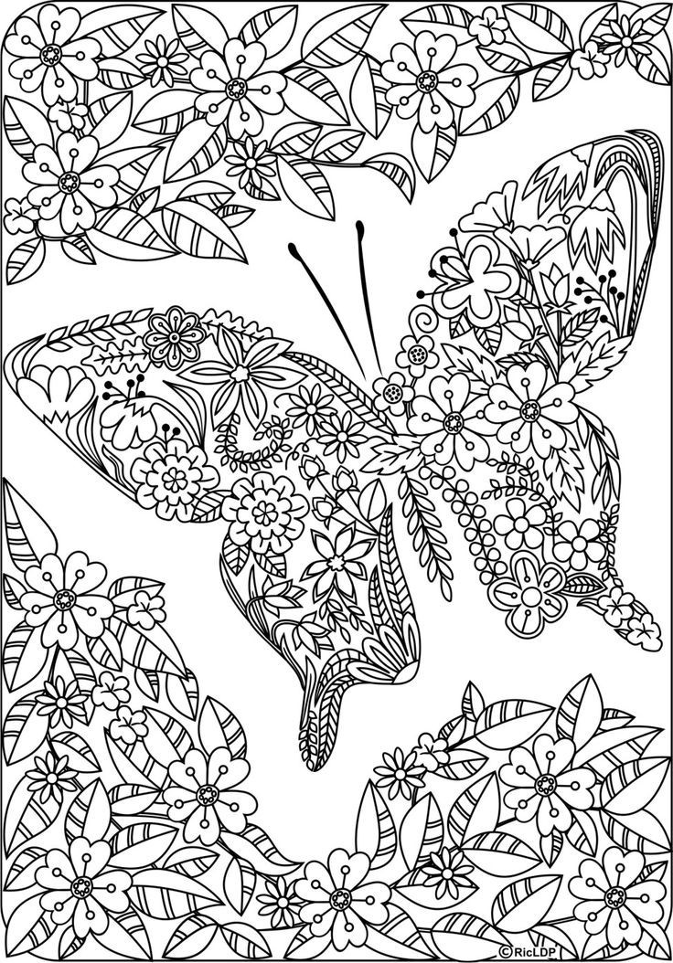 Best ideas about Butterfly Printable Coloring Pages For Adults . Save or Pin Detailed Butterfly Coloring Pages For Adults Now.