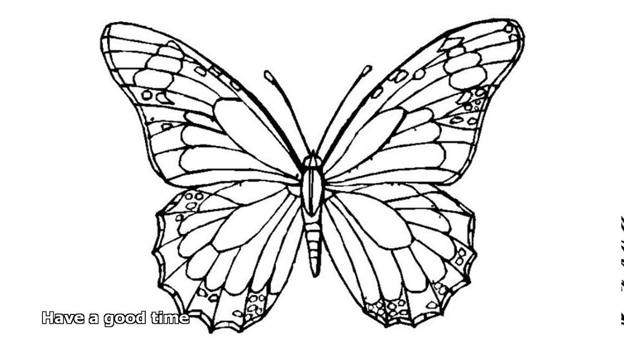 Best ideas about Butterfly Printable Coloring Pages For Adults . Save or Pin butterfly coloring pages Now.