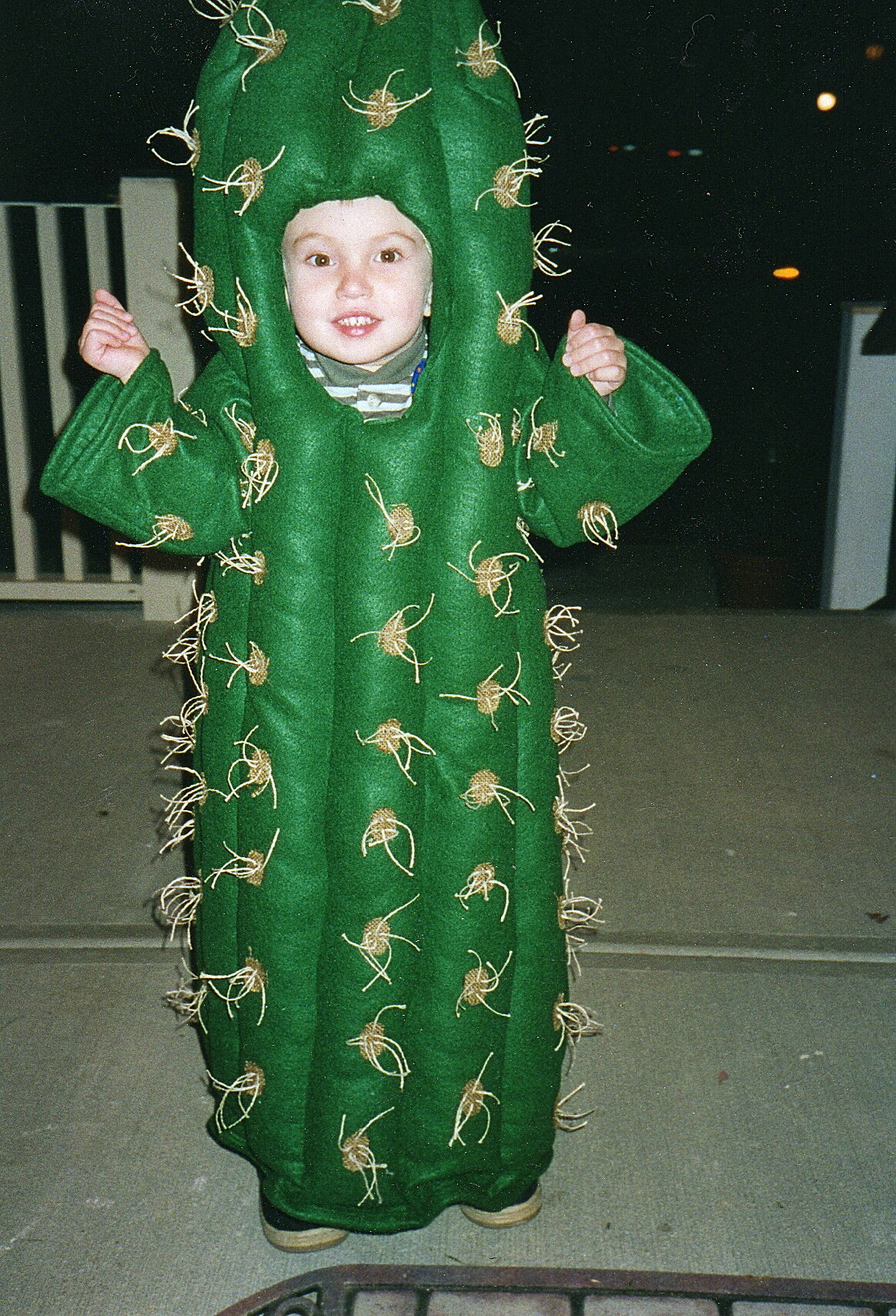 Best ideas about Cactus Costume DIY . Save or Pin BERNINA Halloween 2011 Cactus – Sewing Projects Now.