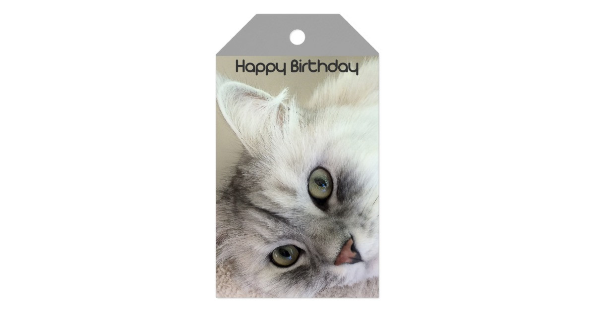 Best ideas about Cat Birthday Gifts . Save or Pin Happy Birthday Cat Lover Gift Tag Now.
