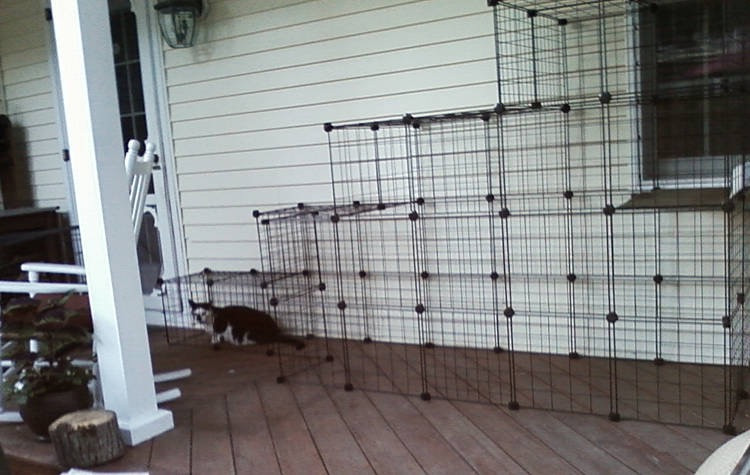 Best ideas about Cat Enclosure DIY . Save or Pin How to build your own catio from Cat and Caboodle Now.