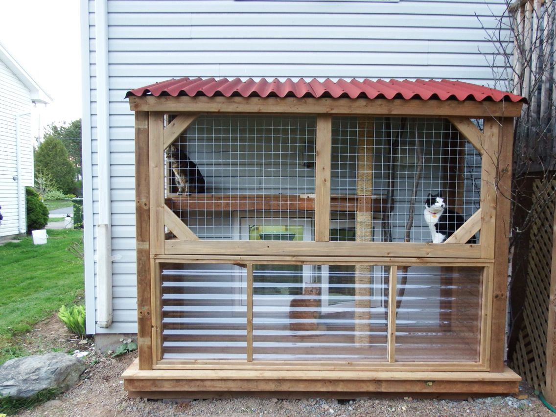 Best ideas about Cat Enclosure DIY . Save or Pin Our DIY catio Cat condo Now.