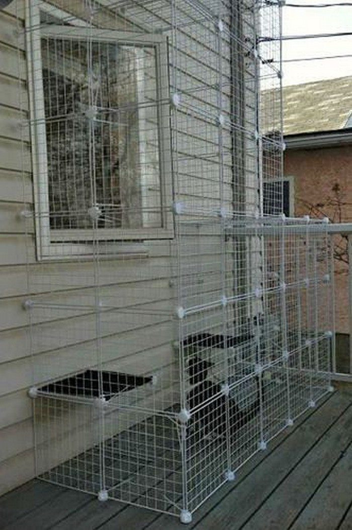 Best ideas about Cat Enclosure DIY . Save or Pin How to build an outdoor cat run Now.