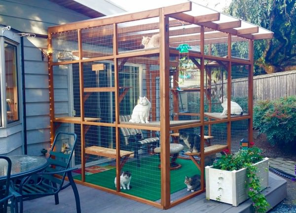 Best ideas about Cat Enclosure DIY . Save or Pin Catios Can Be Built in Three Hours or Less and Let Your Now.