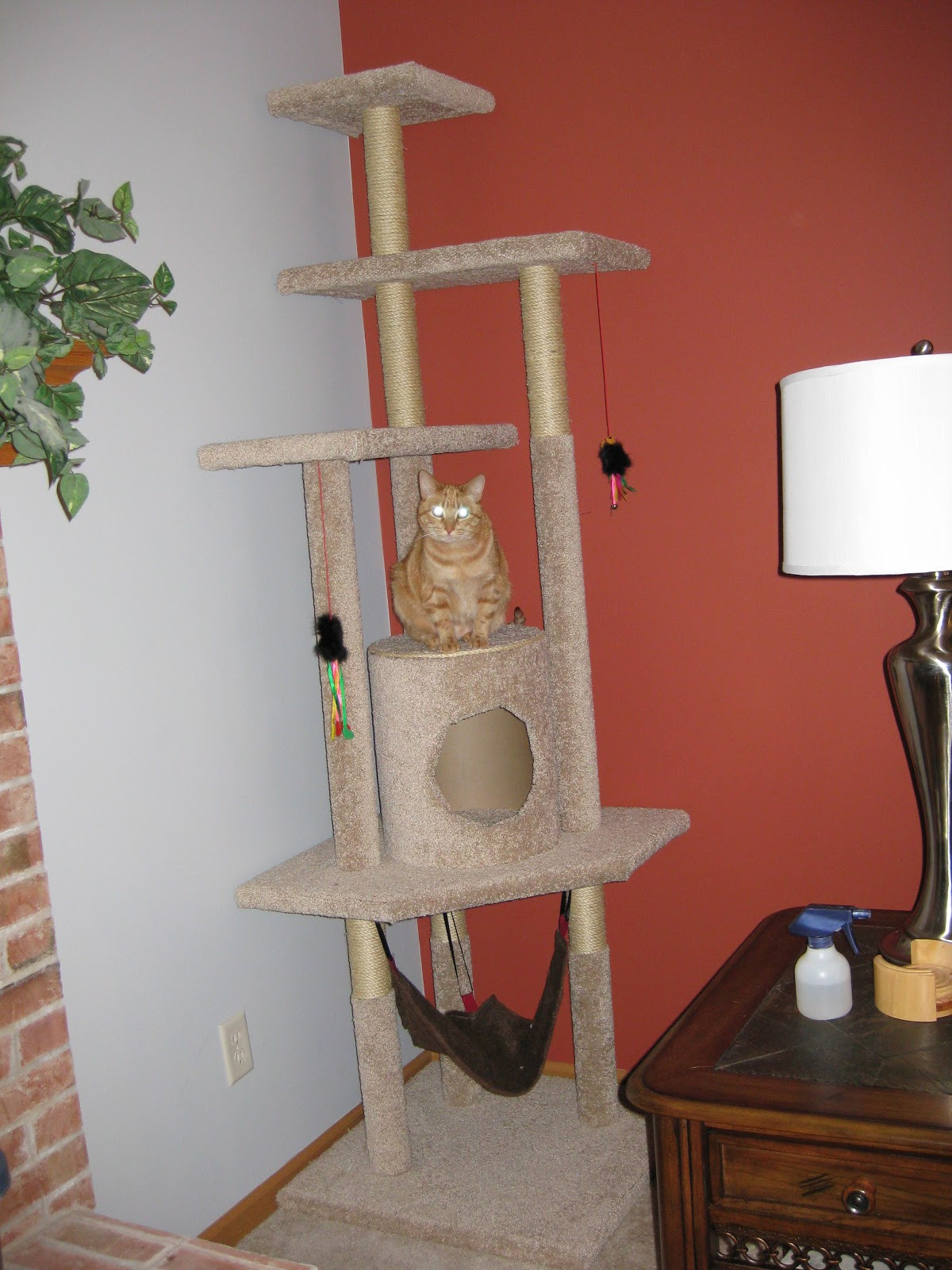 Best ideas about Cat Tree Plans DIY . Save or Pin Pickle Perfect How to Build a Cat Tree Now.