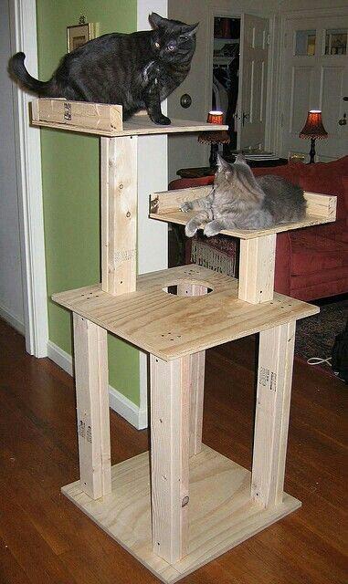 Best ideas about Cat Tree Plans DIY . Save or Pin Casa para gatos Casa soñada Pinterest Now.