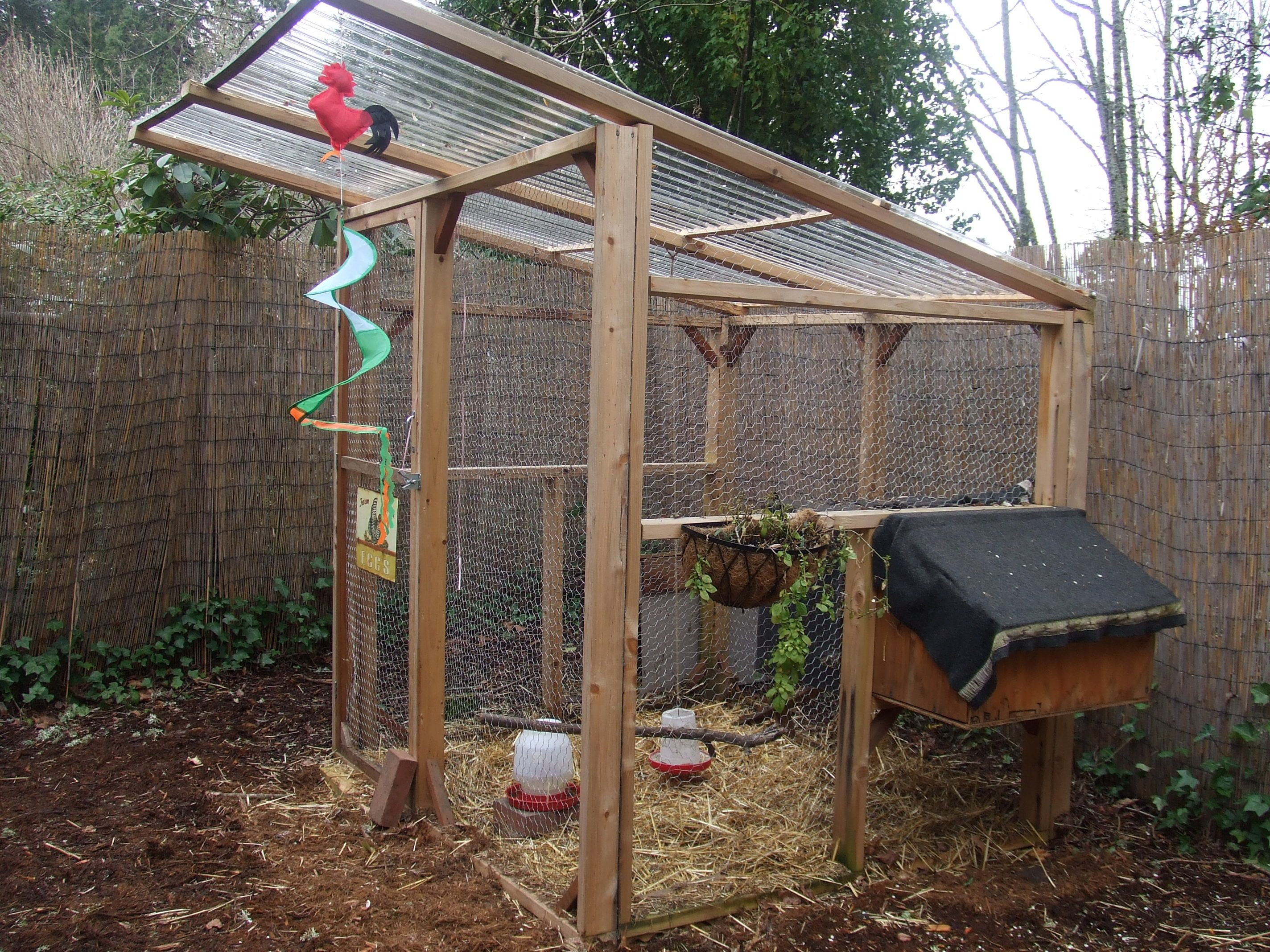 Best ideas about Chicken Coop DIY . Save or Pin DIY Chicken Coop Scarlett Ibis Pinterest Now.