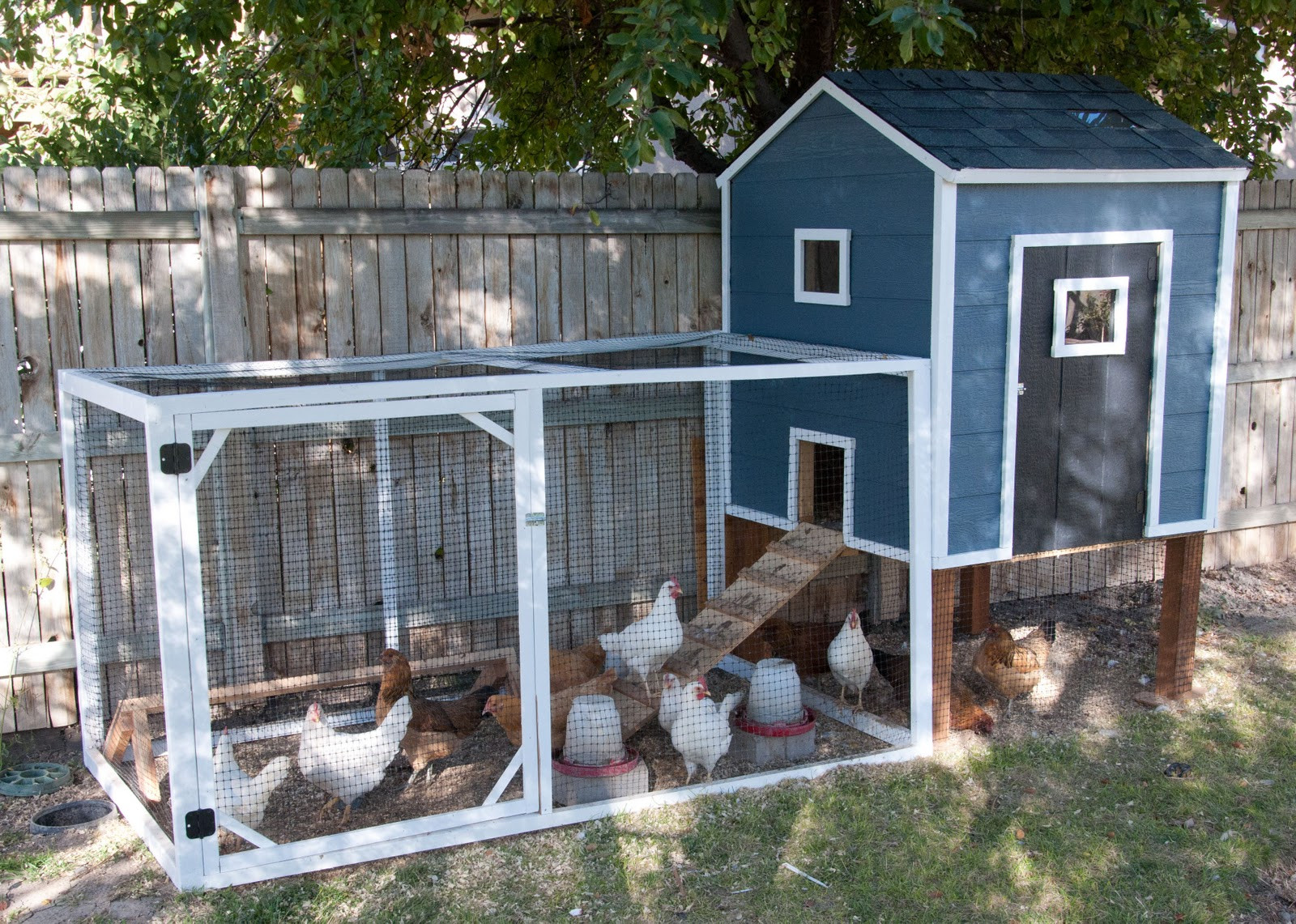 Best ideas about Chicken Coop DIY . Save or Pin Our Chicken Coop A story of chickens Housewives of Now.
