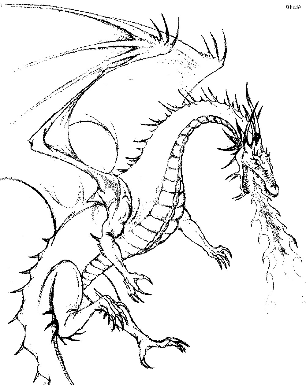 Best ideas about Chinese Dragon Free Printable Coloring Sheets . Save or Pin Color the Dragon Coloring Pages in Websites Now.