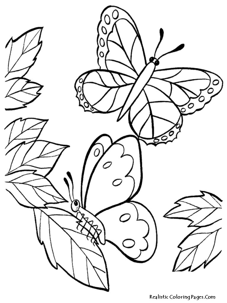 Best ideas about Coloring Sheets For Girls Butterfly . Save or Pin Realistic Butterfly Coloring Pages Now.