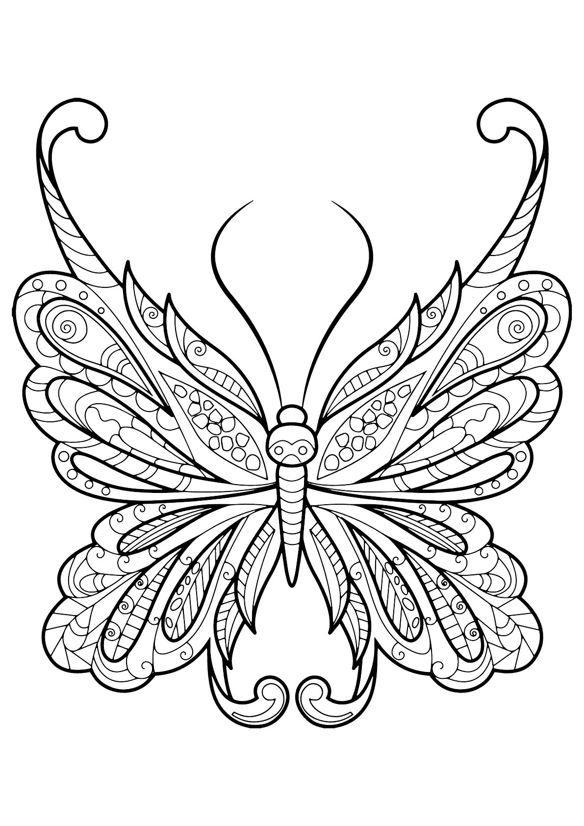 Best ideas about Coloring Sheets For Girls Butterfly . Save or Pin Butterfly beautiful patterns 18 Butterflies & insects Now.