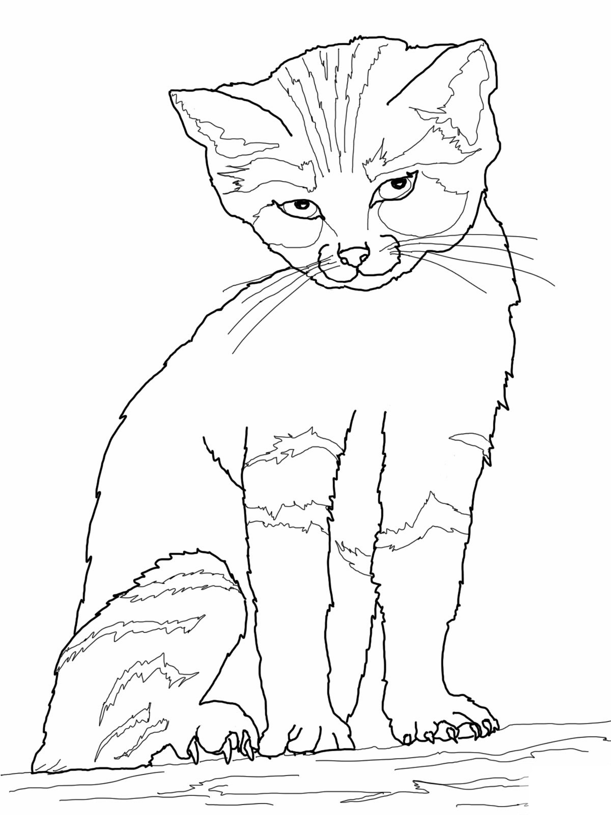 Best ideas about Coloring Sheets For Kids Free . Save or Pin Free Printable Cat Coloring Pages For Kids Now.