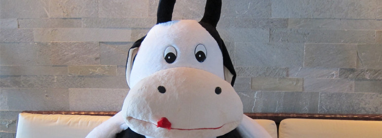 Best ideas about Cow Gift Ideas . Save or Pin 13 Fun Holiday Gifts for Cow Lovers and Dairy Enthusiasts Now.