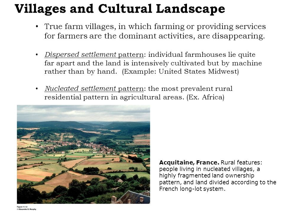 Best ideas about Cultural Landscape Examples . Save or Pin Chapter 11 Agriculture Concept Caching Banana Production Now.