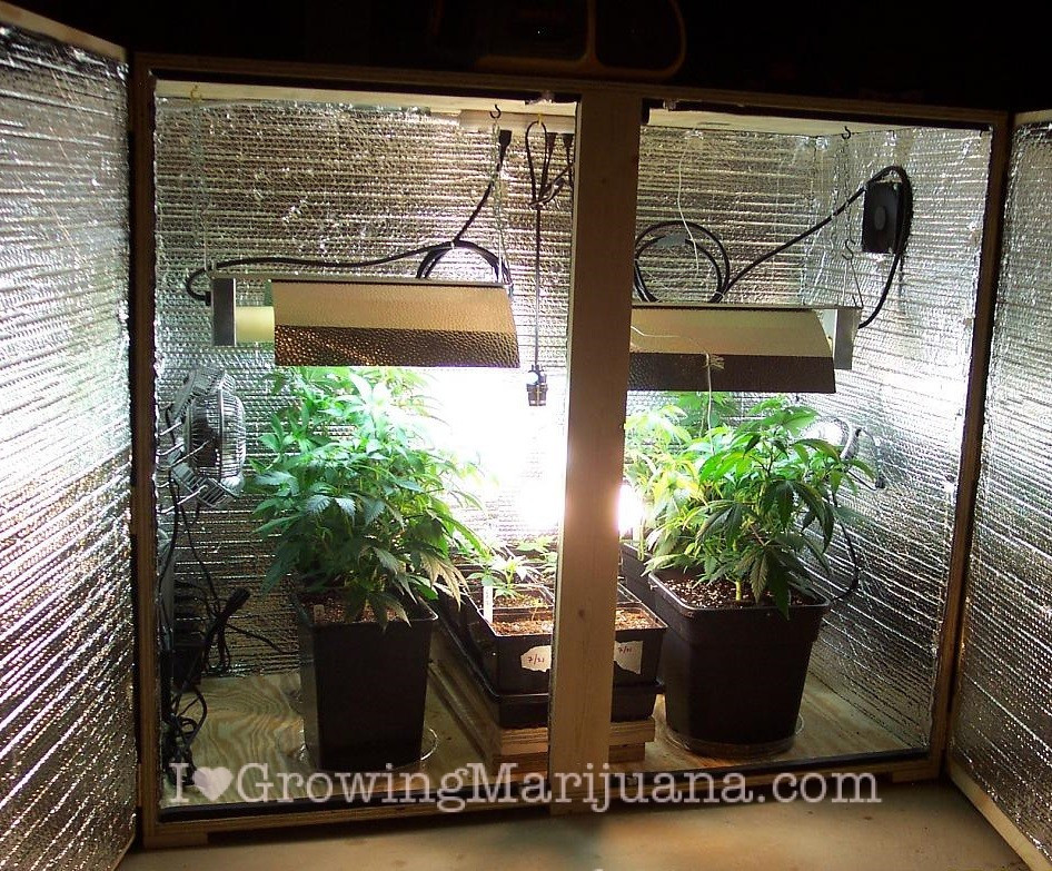 Best ideas about DIY 4Oz Minimum Yield Grow Box . Save or Pin How To Setup A Low Bud Indoor Marijuana Garden Now.